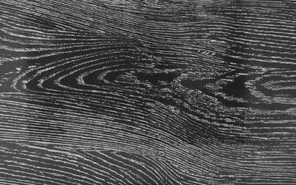 Pločice imitacija drveta Elder Silver
